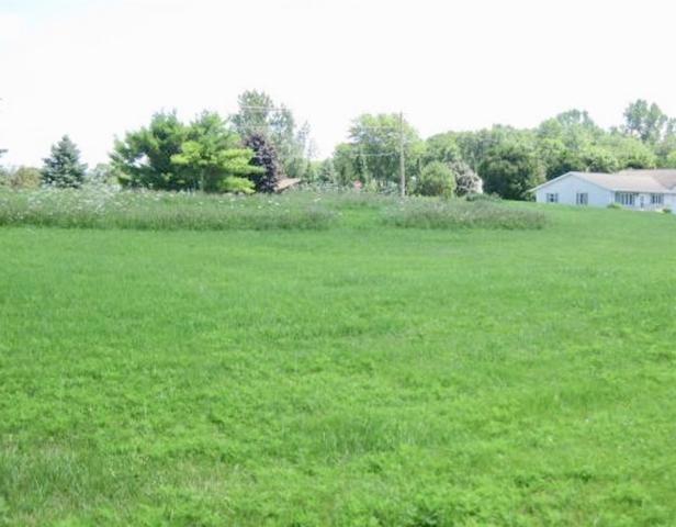 1503 Mason Street, New Holstein, WI 53061 (#50207332) :: Dallaire Realty
