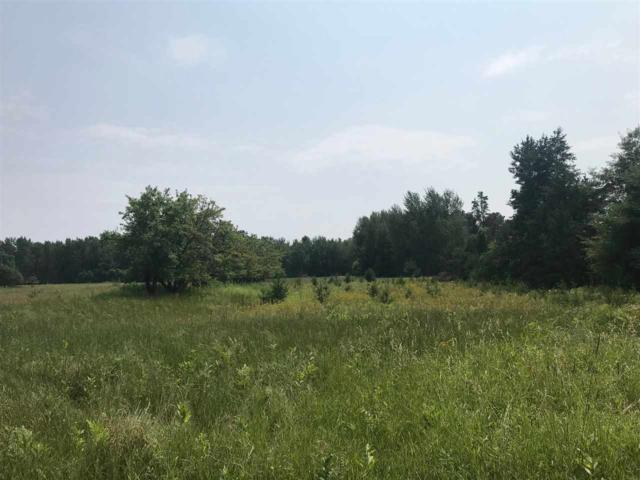 Leaf Road, Marinette, WI 54143 (#50207879) :: Dallaire Realty