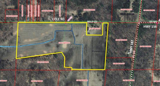 Cole Road, Shiocton, WI 54170 (#50208053) :: Todd Wiese Homeselling System, Inc.