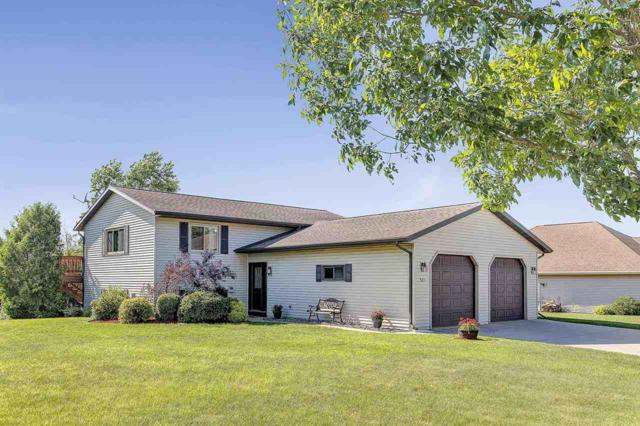 523 Eagle Drive, Oconto Falls, WI 54154 (#50208183) :: Dallaire Realty