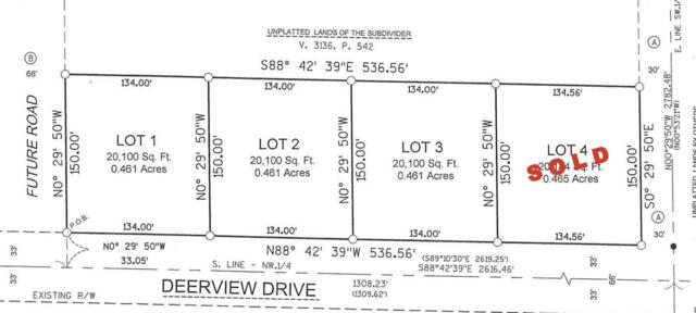 Deerview Drive, Reedsville, WI 54230 (#50208530) :: Dallaire Realty