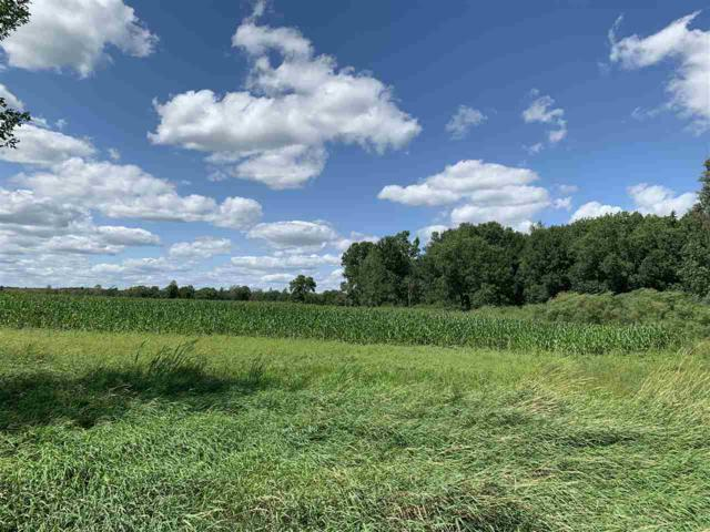 Cedar Road, Fremont, WI 54940 (#50208681) :: Dallaire Realty