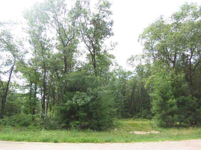 Ann Court, Shawano, WI 54166 (#50208685) :: Symes Realty, LLC