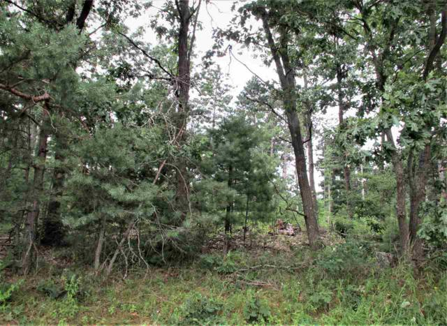 Hwy Tt, Wild Rose, WI 54984 (#50208713) :: Dallaire Realty