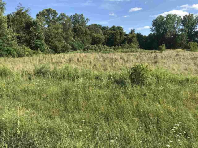Hwy 22, Bonduel, WI 54107 (#50208791) :: Dallaire Realty