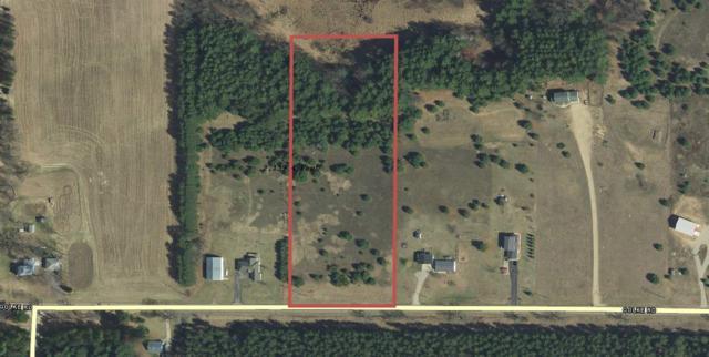 Golke Road, Waupaca, WI 54981 (#50208973) :: Todd Wiese Homeselling System, Inc.