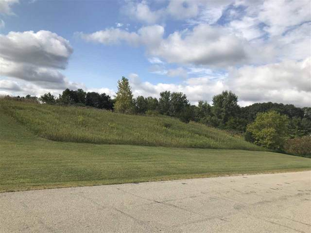 Highview Court, Shiocton, WI 54170 (#50210448) :: Dallaire Realty