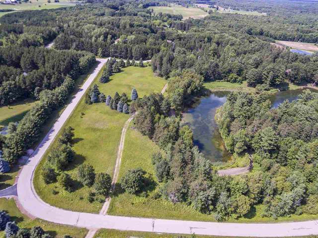 Lot D Spring Lake Drive, Sobieski, WI 54171 (#50210682) :: Dallaire Realty