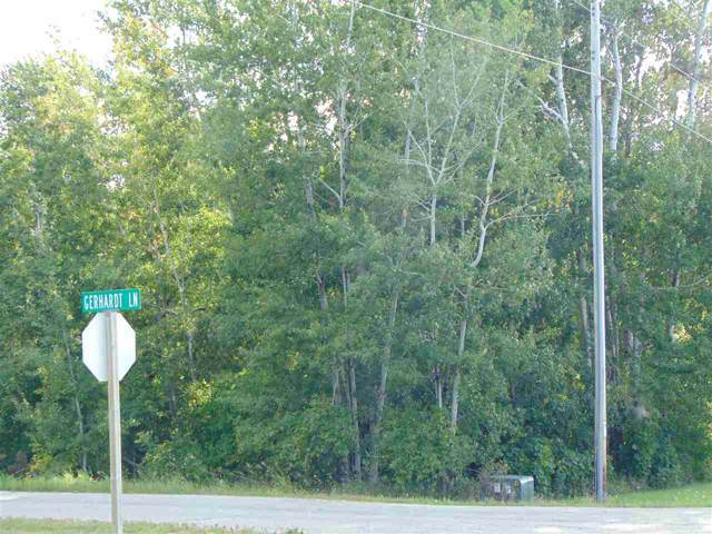 N6885 Gerhardt Lane, New London, WI 54961 (#50210725) :: Dallaire Realty