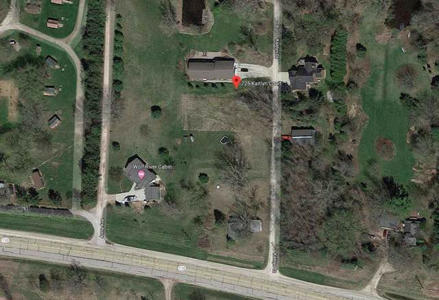 725 Kaitlyn Court, Fremont, WI 54940 (#50210749) :: Todd Wiese Homeselling System, Inc.