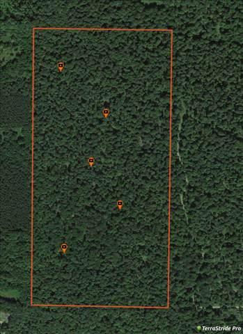 Berg Road, Tigerton, WI 54486 (#50210935) :: Todd Wiese Homeselling System, Inc.