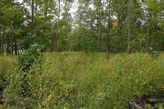 Lot 1 Seidl Road, Manitowoc, WI 54220 (#50211176) :: Symes Realty, LLC