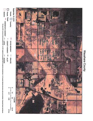 N6006 28TH Road, Pine River, WI 56474 (#50211402) :: Symes Realty, LLC