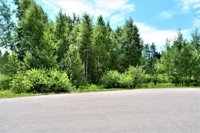Brer Fox Road, Lakewood, WI 54138 (#50211791) :: Symes Realty, LLC