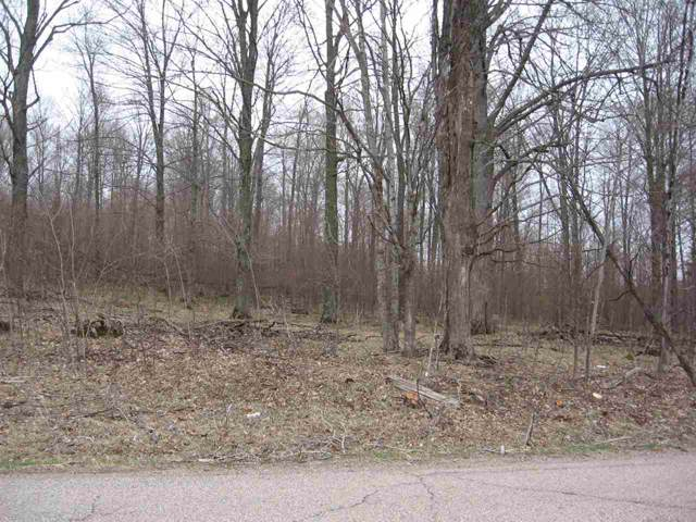 Robin Road, Wittenberg, WI 54499 (#50212089) :: Dallaire Realty