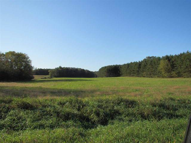 Hwy Aa, Wild Rose, WI 54984 (#50212318) :: Carolyn Stark Real Estate Team