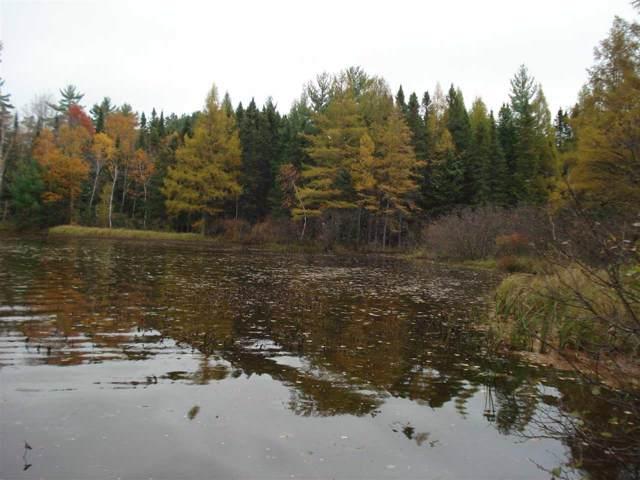 Tom Doyle Lake Road, Rhinelander, WI 54501 (#50212668) :: Symes Realty, LLC