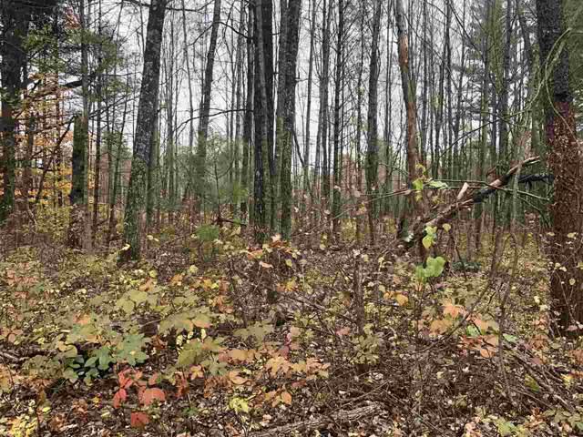 W2350 Medicine Hat Trail, Keshena, WI 54135 (#50213378) :: Dallaire Realty