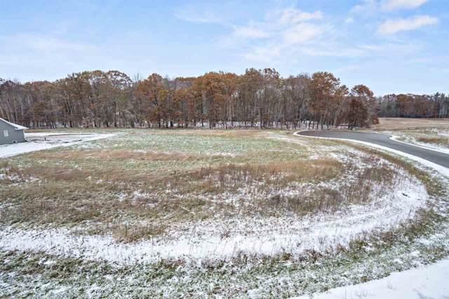 Song Bird Circle, Sobieski, WI 54171 (#50213844) :: Symes Realty, LLC