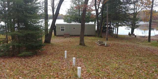 10197 North Tree Lake Drive, Rosholt, WI 54473 (#50214271) :: Todd Wiese Homeselling System, Inc.