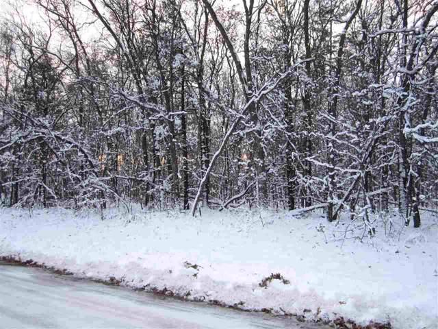 Loon Lake Drive, Shawano, WI 54166 (#50214892) :: Dallaire Realty