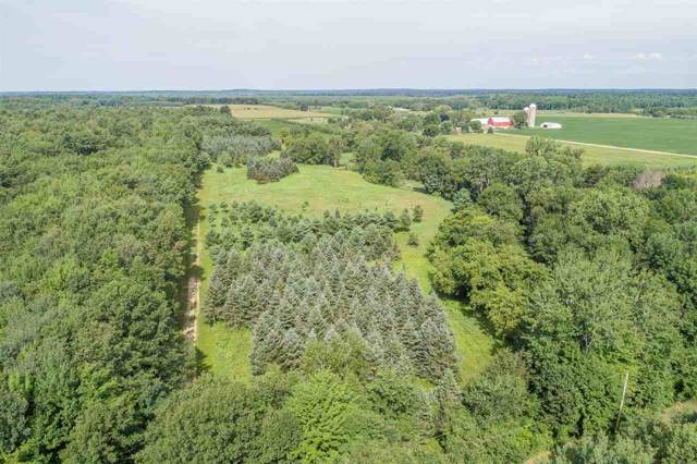 Pines Road, Fremont, WI 54940 (#50214920) :: Todd Wiese Homeselling System, Inc.