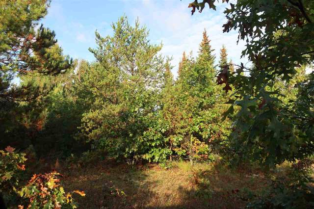 Bighorn Drive, Wautoma, WI 54982 (#50215247) :: Todd Wiese Homeselling System, Inc.