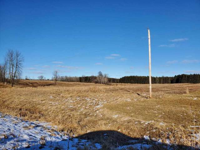 Hwy 42, Algoma, WI 54201 (#50215771) :: Todd Wiese Homeselling System, Inc.