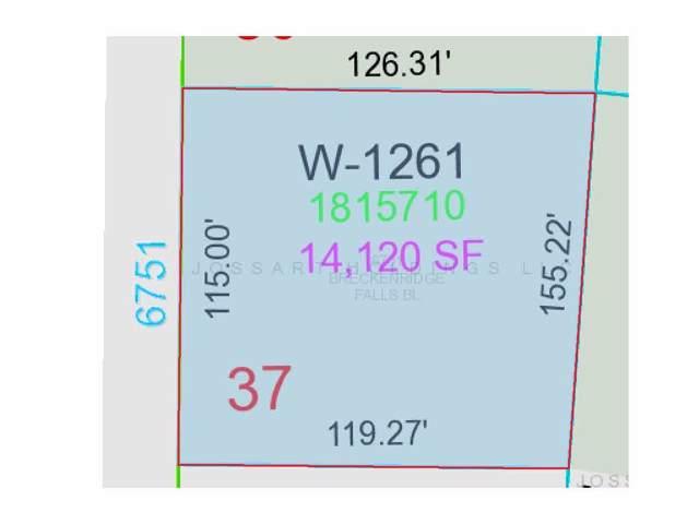 6751 Breckenridge Falls Boulevard, Greenleaf, WI 54126 (#50215926) :: Todd Wiese Homeselling System, Inc.