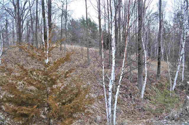 Geano Beach Road, Abrams, WI 54153 (#50216139) :: Symes Realty, LLC