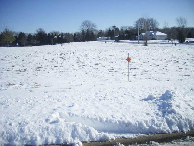 Old Orchard Avenue, Casco, WI 54205 (#50216453) :: Todd Wiese Homeselling System, Inc.
