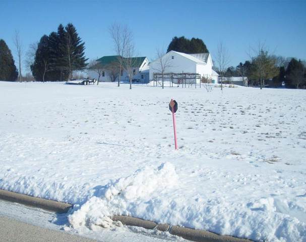 Old Orchard Avenue, Casco, WI 54205 (#50216463) :: Todd Wiese Homeselling System, Inc.
