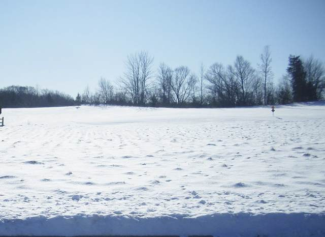 Old Orchard Avenue, Casco, WI 54205 (#50216464) :: Todd Wiese Homeselling System, Inc.