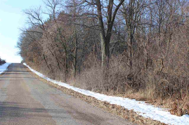 Akron Drive, Wild Rose, WI 54984 (#50216489) :: Todd Wiese Homeselling System, Inc.