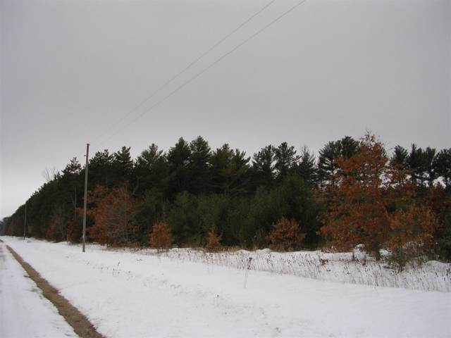 Hwy O, Wautoma, WI 54982 (#50216575) :: Todd Wiese Homeselling System, Inc.