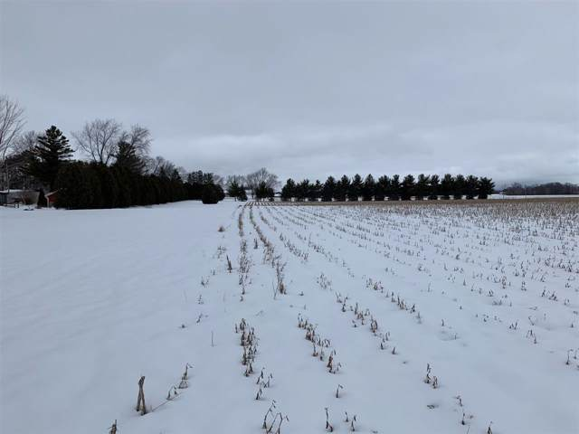 French Road, Appleton, WI 54913 (#50216585) :: Todd Wiese Homeselling System, Inc.