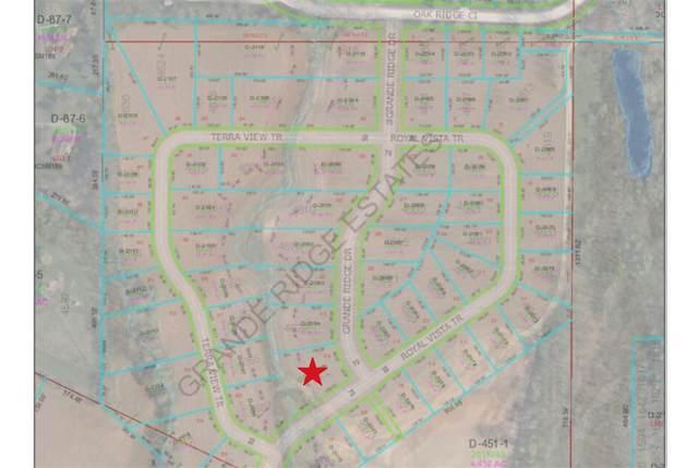4634 Grande Ridge Drive, De Pere, WI 54115 (#50216732) :: Todd Wiese Homeselling System, Inc.