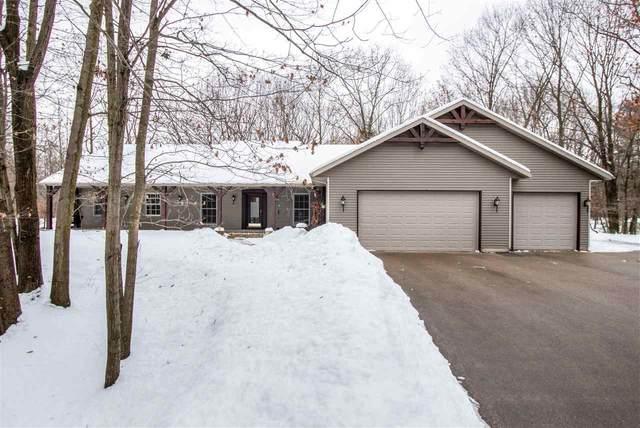 6606 Maplewood Lane, Sobieski, WI 54171 (#50216988) :: Todd Wiese Homeselling System, Inc.