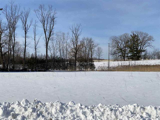 Executive Circle, Little Suamico, WI 54171 (#50217071) :: Todd Wiese Homeselling System, Inc.