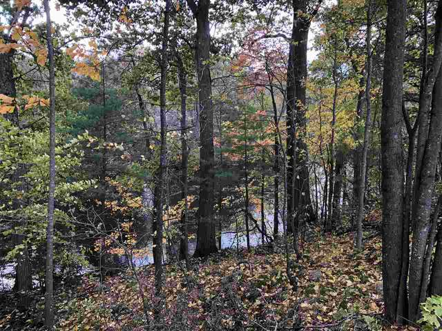 Red River Shoreline Acres, Shawano, WI 54166 (#50217394) :: Dallaire Realty