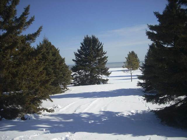 606 Lakeshore Drive, Kewaunee, WI 54216 (#50217808) :: Dallaire Realty