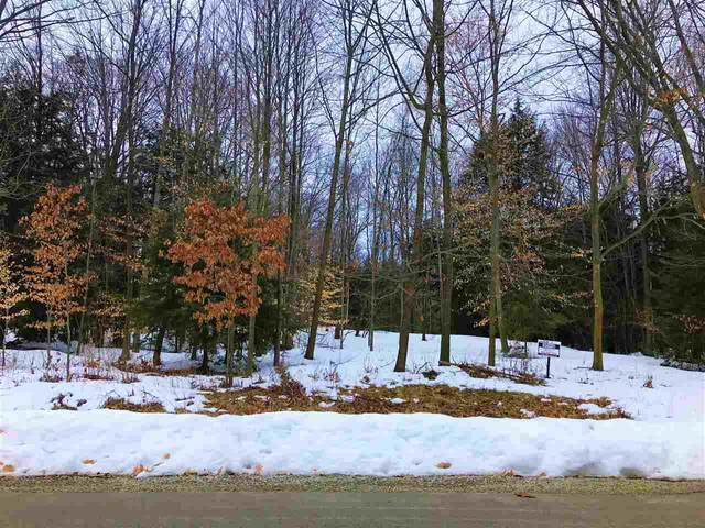 Elderberry Court, Suamico, WI 54313 (#50217944) :: Todd Wiese Homeselling System, Inc.