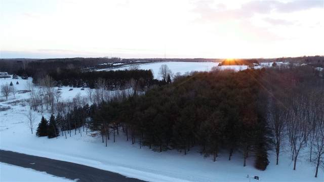 3883 Trappers Bend Court, Suamico, WI 54173 (#50218020) :: Todd Wiese Homeselling System, Inc.
