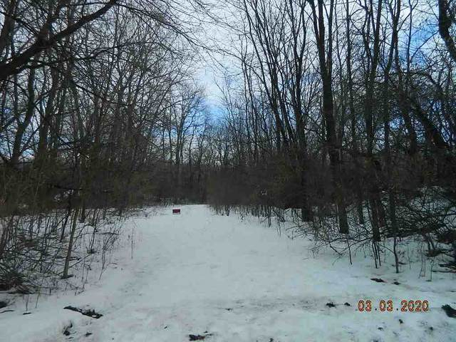 Sand Pit Road, Omro, WI 54963 (#50218277) :: Todd Wiese Homeselling System, Inc.