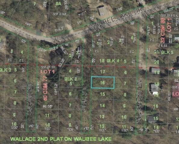 Pine Street, Lakewood, WI 54138 (#50218361) :: Dallaire Realty