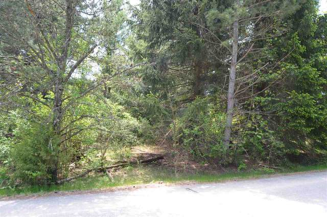 Lakeview Drive, Wautoma, WI 54982 (#50218398) :: Dallaire Realty