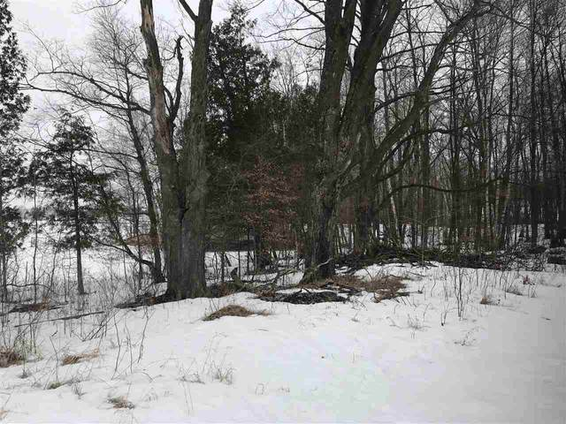 Brusewitz Road, Black Creek, WI 54106 (#50218403) :: Symes Realty, LLC