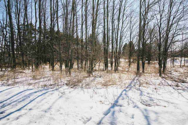 Sunnyside Road, Green Lake, WI 54941 (#50218680) :: Todd Wiese Homeselling System, Inc.