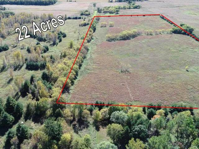 Kirschner North Road, Shiocton, WI 54170 (#50218852) :: Todd Wiese Homeselling System, Inc.