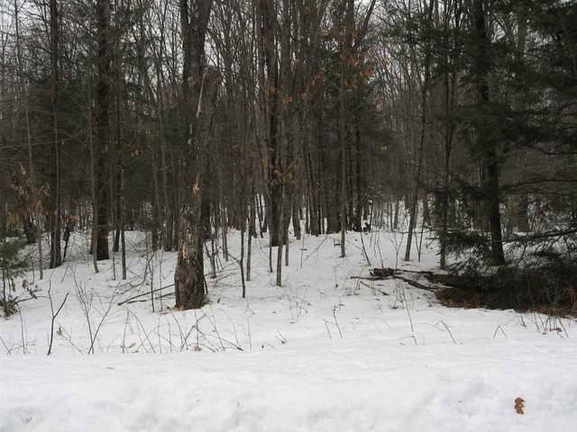 Reini Lane, White Lake, WI 54491 (#50219118) :: Todd Wiese Homeselling System, Inc.